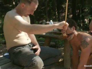 שימוש ו - התעללות a camp שרמוטה