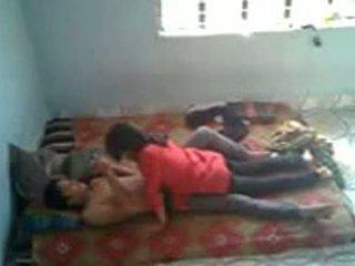 borsten, knal, bangladeshi