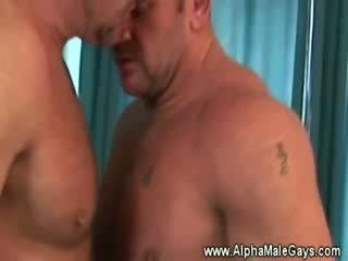 Mature étalon seduces une gay par projection de