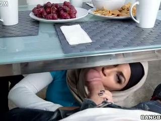 any blowjob, ideal arab, hq sister