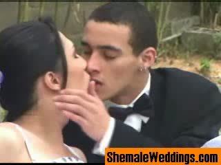 shemale, wedding, tranny