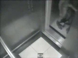 Spying لي neighbour فتاة في elevator