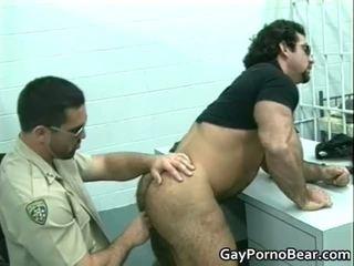Gratis homo bears gefickt und sucked