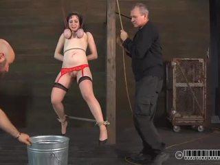 Bailarina needs selvagem taming