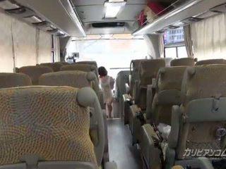 4x4 caribbean حافلة جولة يبدأ من كوك مص