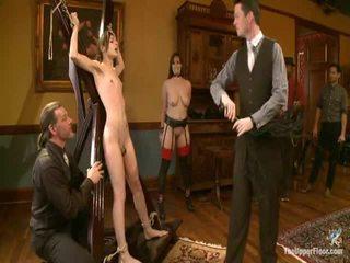 verdzība sex, disciplīna, mazohisms