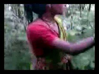 Aunty γαμώ σε ζούγκλα