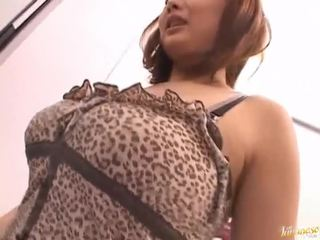 japonec, exotický, výstrek