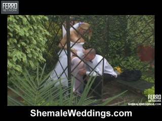 Alessandra cocky kétnemű menyasszony