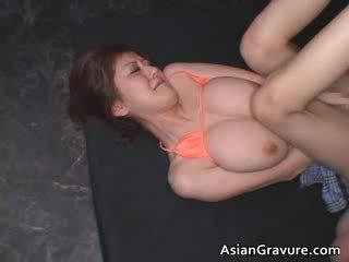 Stor pupper ekte asiatisk ginger getting henne