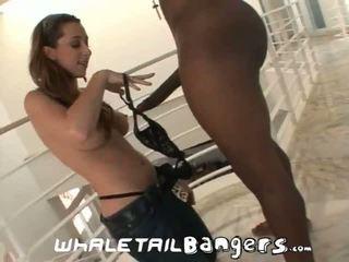 assfucking, bộ ngực to, anal sex
