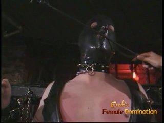 Poredno žrebec v a maska enjoys being spanked s an azijke