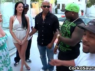hardcore sex, apaan keras, gang bang