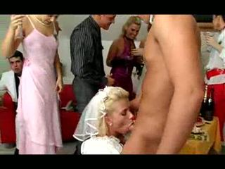 wedding hq, ideal sex mare, toate orgie distracție