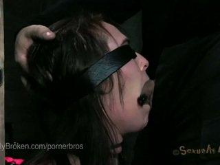 plezier cock sucking vid, heetste bdsm gepost, een pornosterren film