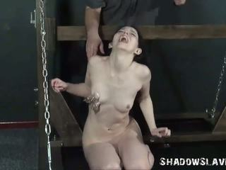 kwaliteit shemale gepost, bdsm video-, controleren shemales with guys video-