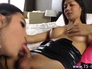 ideal shemale, check blowjob, hottest ladyboy movie