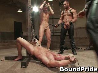 przystojniak, gay oral, kołek palant gejów