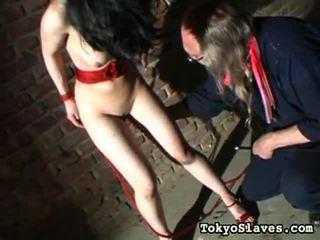 hottest hardcore sex, submission, dominant fresh