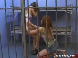 Sorry, free lesbian prison porn