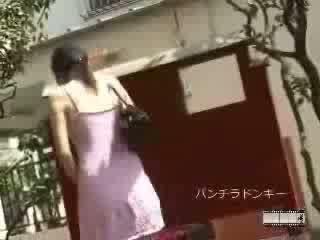 japonés, pelo, para