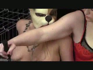 Caged And Forced Pet Play Video