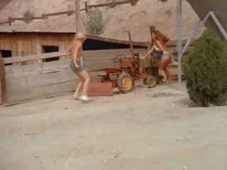 seks gepost, echt de, echt boerderij scène