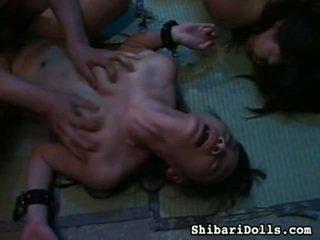 Seksi zbirka od debeli x ocenjeno porno mov od shibari dolls