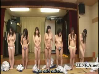 japonijos, puma, keistas, namų šeimininkės