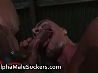 first time fuck and suck, free gay men fuck and suck, heroes fuck and suck