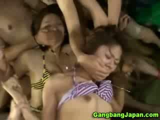 japonec zadarmo, zadarmo exotický, kvalita orientálne