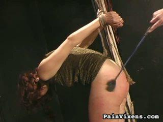 torture hq, painful hot, humiliation watch