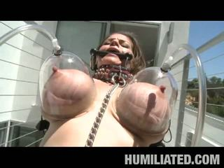 all brunette, most big boobs ideal, free torture great