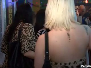 组 性别 野 patty 在 夜晚 俱乐部