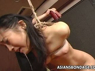 fun japanese thumbnail, ideal bdsm porno, you bondage fucking