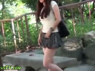 japonijos, visuomenės, lauko, fetišas