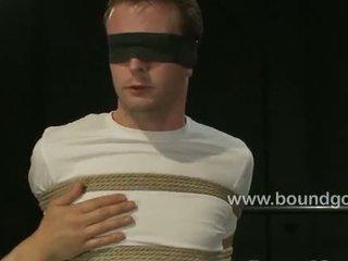 heetste homo-, een leer, mooi bizzare video-