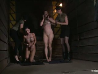 Cute Sadism Lezzy 3some Around Pair Submissive Pussys Constrained And Toyed