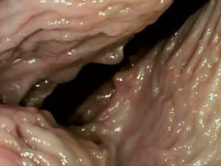 hot vaginal sex fresh, cum shot hot, cream pie