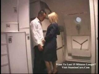 stewardess, flight