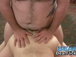 quality gay, bear all, blowjob any