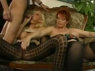 big boobs, milfs, redheads, threesomes