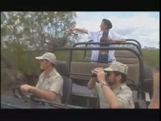 Porn for safari