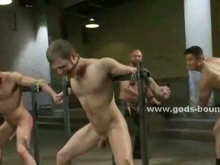 gratis groepsseks video-, homo-, ideaal bizzare