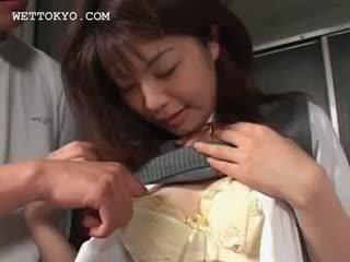comprobar japonés calidad, completo bebé comprobar, usted conjunto de tres