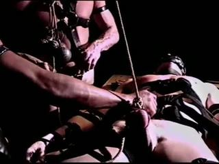 Siksaan alat kelamin pria restrained sub untuk ekstrem session.