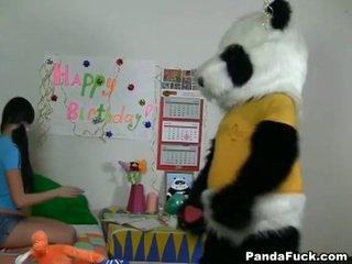 Panda gets muda remaja babe