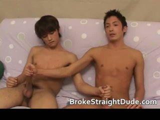 מכללה, תלמיד, הומוסקסואל