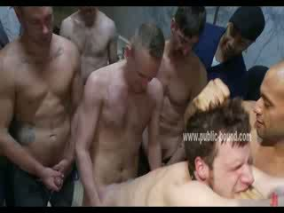 gay, stud, twink