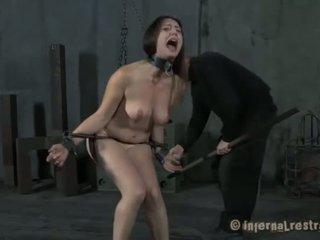 kut marteling, bdsm, slavernij
